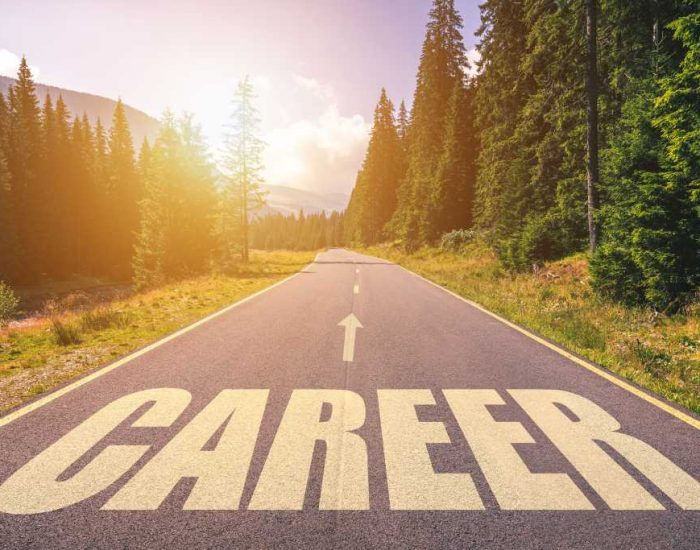 What is Your Career Path in 2020? | HIREConsulting.com